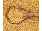 Lan, zlatni, 4g (oko 650 semenki)