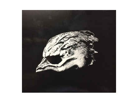 Legend Of The Seagullmen, Legend Of The Seagullmen, CD