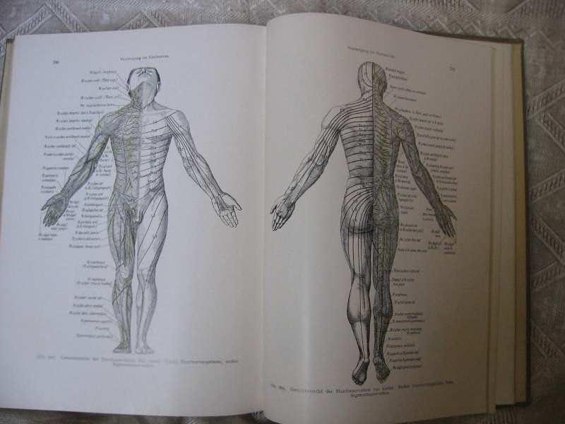 Lehrbuch der topographischen Anatomie- ANATOMSKI ATLAS