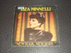 Liza Minnelli - New York, New York