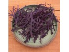 Ljubičasta mizuna- Japanski kupus (150 semenki)