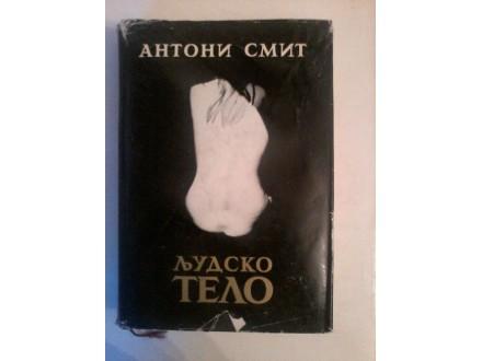 Ljudsko telo, Antoni Smit