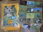 Loto sa slikama ptica SPIKA Made in GDR