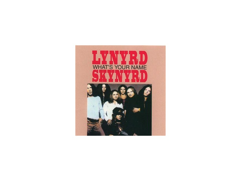 Lynyrd Skynyrd - What`s Your Name