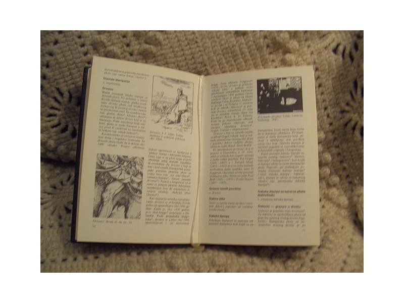Mali leksikon štamparstva i grafike Klajn