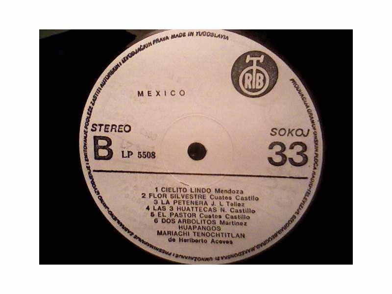 Mariachi Tenochtitlan de Heriberto Aceves  - Mexico