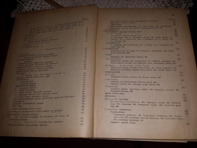 Medicinska mikrobiologija i parazitologija Dora Filipov