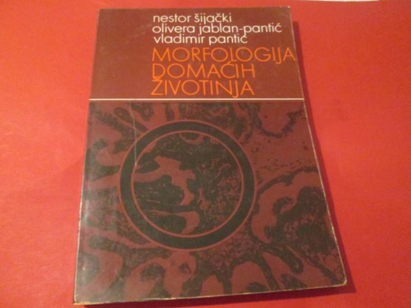 Morfologija domaćih životinja, Nestor Šijački