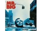 Mr. Big – Bump Ahead (LP)