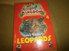 My animal kingdom - All About leopards - DeAgostini