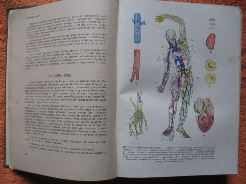 Narodni lekar