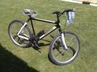 New Line NOVA bicikla