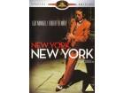 New York,New York