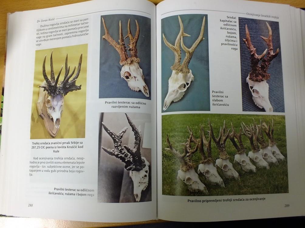 Upoznavanje lovačkih rogova