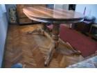 Orahov ovalni sto