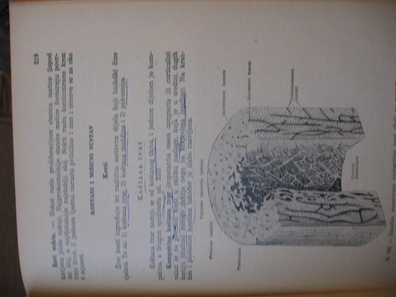 Osnovi histologije covjeka - V. Duancic
