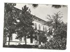 Palic,Subotica,cb razglednica,oko 1960,cista.