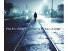 Pat Metheney - What`s It All About