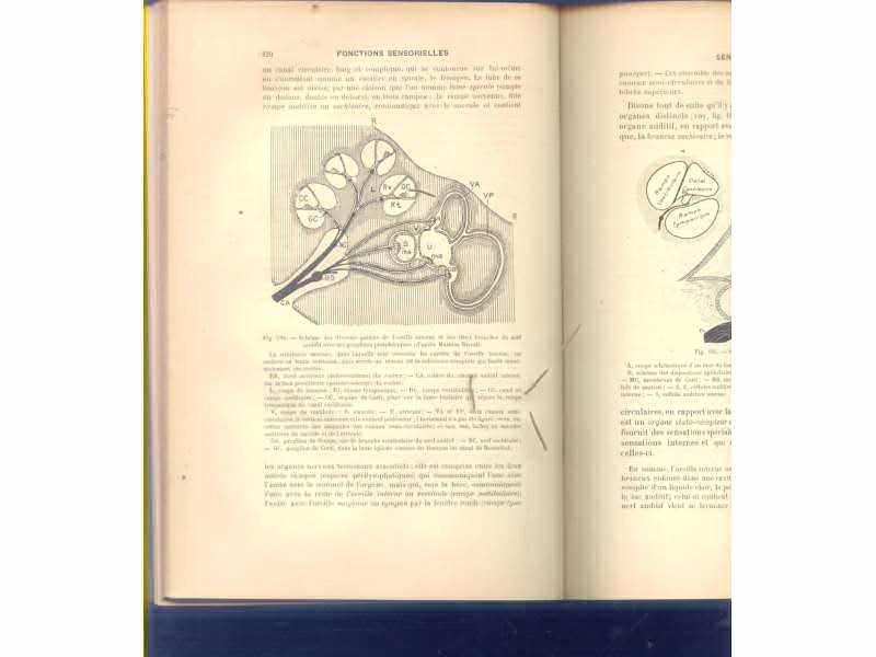 Physiologie (traite elementarire) 1910 Paris