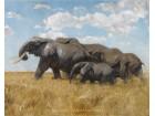 Pohod slonova - Fridrih Kuhnert - magnet za frižider