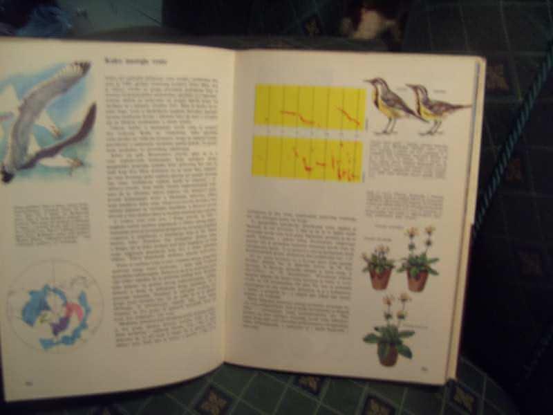 Priroda, savremena ilustrovana enciklopedija