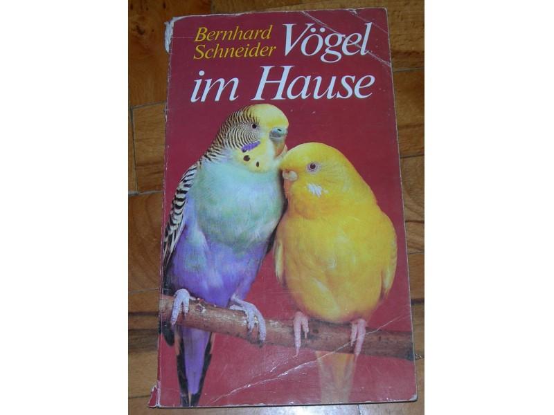 Ptice u kući (na nemačkom) - Bernhard Schneider