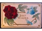 Razglednica reljefna Best Wishes (998.)