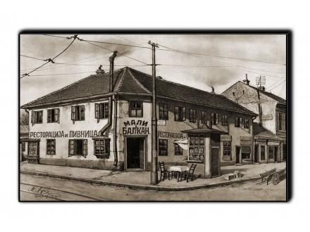 Reprodukcija na medijapanu Beograd