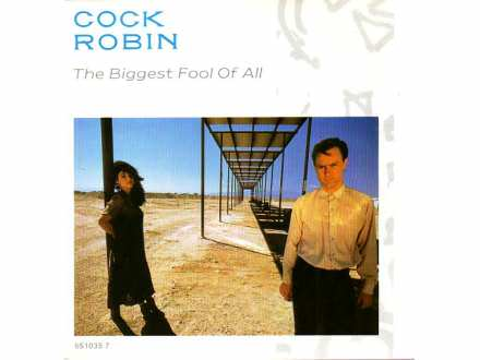 Robin Cook - The Biggest Fool Of All