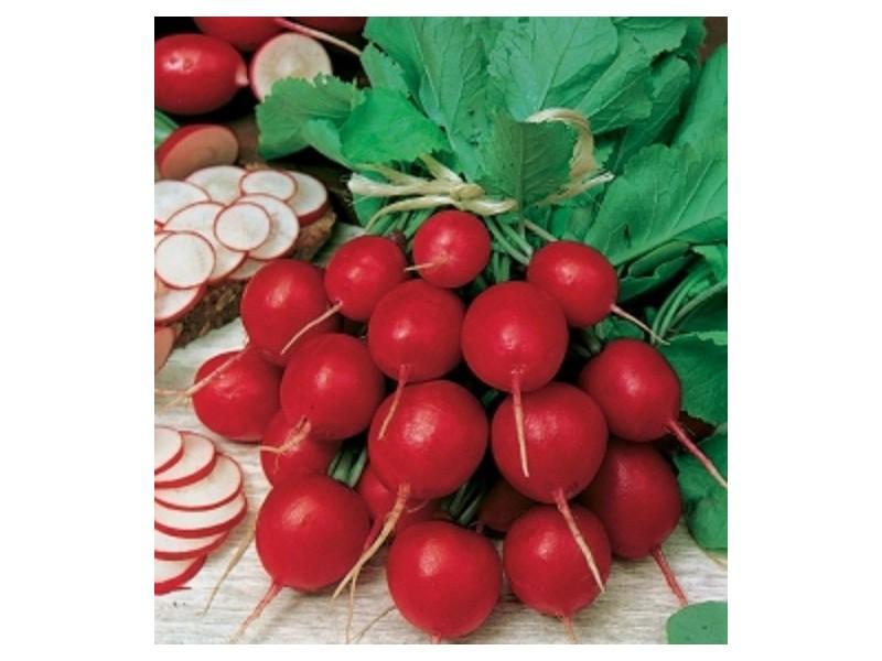 Rotkvica `Cherry Belle`