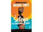 ŠETNJA PO SUNČANOM DANU - Aleksandar Mekol Smit