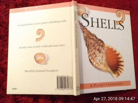 SHELLS, A POCKET COMPANION