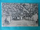 SMEDEREVO-SEMENDRIA/PARK/1920/30-/XXI-99/