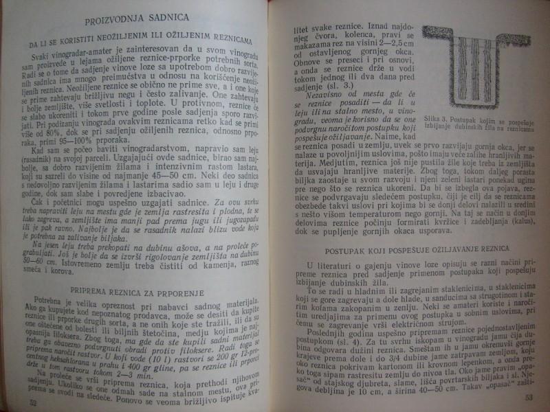 Saveljev, 300 SAVETA ZA VINOGRADARE - AMATERE