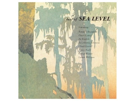 Sea Level - Best Of