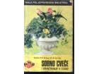 Sobno cveće i aranžiranje u stanu  Mala poljoprivredna