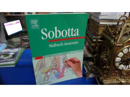 Sobotta Malbuch der Anatomie