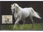Srbija 2014 Lunarni horoskop - Godina konja, CM