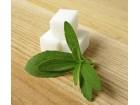 Stevia-prirodni zaslađivač (500 semenki)