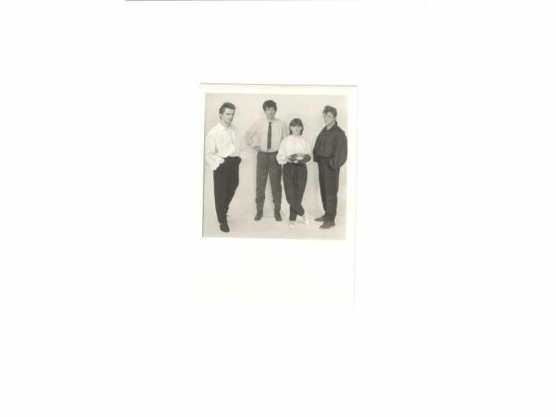 Stidljiva ljubicica - fotografija  11,5 x 17 cm