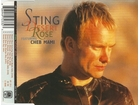 Sting Featuring Cheb Mami - Desert Rose