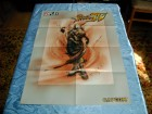Street Fighter IV - Devil May Cry - poster iz PC Playa