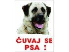 TURSKI KANGAL - Čuvaj se psa , nalepnice i table