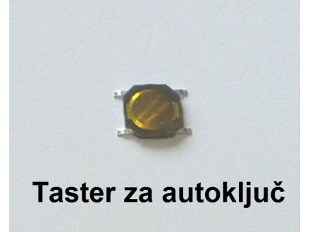 Tasteri za auto kljuceve - Mikroprekidaci - Model 9