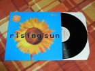 The Farm - Rising Sun 12` UK 1992 End Product