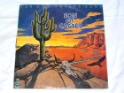 The New Cactus Band – Son Of Cactus