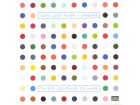 Thirty Seconds To Mars* ‎– Love Lust Faith + Dreams