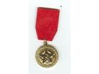 Tone Tomsic,Udarna Brigada,1942-1982,medalja