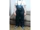 Tregerice pantalone od visoko kvalitetne EKO kože NOVO! slika 1