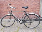 Treking bicikl - Patria